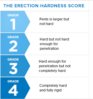 the erection hardness score
